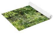Boys Hiking In Woods Yoga Mat