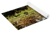 Catching Frogs Yoga Mat