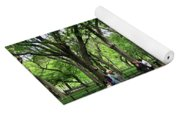 Central Park Arbor Walk Spring Yoga Mat
