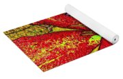 Clematis In Colored Pencil  Yoga Mat
