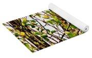 Cucumber Tree Blossoms Yoga Mat