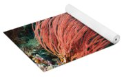 Divers And Whip Coral Yoga Mat