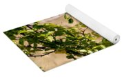 Dragonfly Lunch Yoga Mat