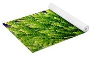 Extreme Shades Of Green Yoga Mat