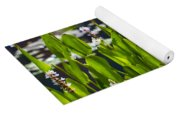 Fabulous Water Hyacinth  Yoga Mat