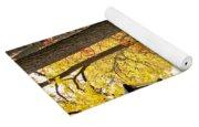 Fall Color And Lamppost Yoga Mat