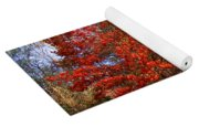 Fall Tree By The Road Yoga Mat