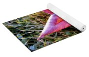 Fallen Autumn Leaf In The Grass During Morning Frost Yoga Mat