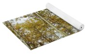 Falling For The Birch And Aspens Yoga Mat