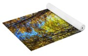 Forest Path In Autumn Yoga Mat