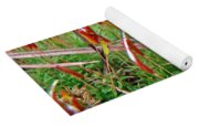 Fruiting Moss - Red And Green Tableau Yoga Mat