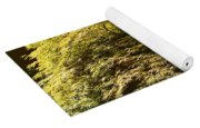 Golden Japanese Maple Yoga Mat