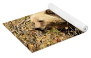Grizzly In The Brush Yoga Mat