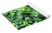 Hidden Waterfall Yoga Mat