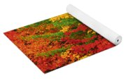 Leaves On Trees Changing Colour Yoga Mat