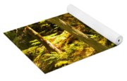 Lord Of The Rings Glacier National Park Yoga Mat