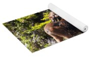 Moose Brunch Yoga Mat