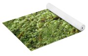 Moss Covered Tree Yoga Mat