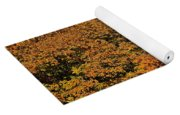 Over The Hedge Yoga Mat