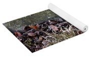 Photo Watercolour Leaf Against Rock Yoga Mat