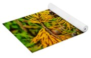 Pine Cones And Needles On A Branch Yoga Mat