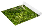 Poplar Tree And Leaves No.368 Yoga Mat