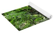 Rocky Forest Of Chatfield Yoga Mat