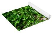 Sneaky Green Yoga Mat