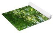 Sunlit Forest Yoga Mat