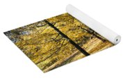 Sunny Day In The Autumn Park Yoga Mat