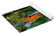 Sunset On A Lily Pond Yoga Mat