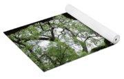 Tampa Trees Yoga Mat
