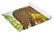 Three Cheetahs Yoga Mat