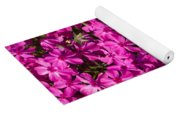 Tiger In The Phlox 5 Yoga Mat