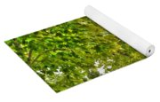 Transition Of Autumn Color Yoga Mat