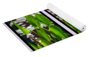 Triptych Of Water Hyacinth Yoga Mat