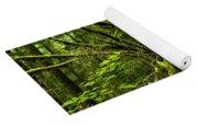 Twisted Rain Forest Yoga Mat