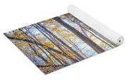 0983 Starved Rock Colors Yoga Mat