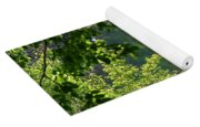 Pocket Lake Yoga Mat