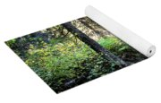 Waterton Valley Trail Detail - Glacier National Park Yoga Mat