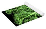 Kale, Brassica Oleracea, X-ray Yoga Mat