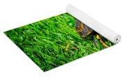 2015 05 03 01 B 1 _0181 Yoga Mat