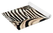 Burchells Zebras Equus Quagga Yoga Mat