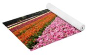 field of cultivated Buttercup  Yoga Mat