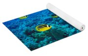 Raccoon Butterflyfish Yoga Mat