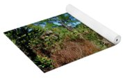 55- Everglades Afternoon Yoga Mat