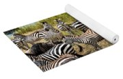 A Dazzle Of Zebras Yoga Mat