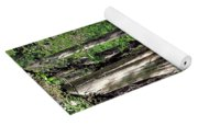 A Florida Riverine Forest 2 Yoga Mat