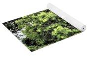 A Glimpse Of Nature Yoga Mat