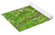 A Tree And It's Roots Yoga Mat